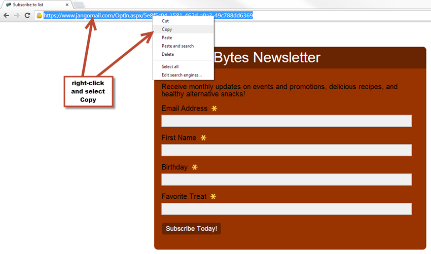 Create an Opt-In Form for Your Email List – JangoMail Help